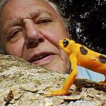 Sir David Attenborough 'gets hate mail from creationists'